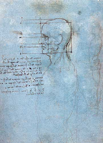 Leonardo da Vinci study of the head 1489