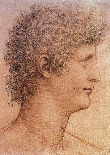 Leonardo Da Vinci Profile Study of a Youth (Salai), c.1510