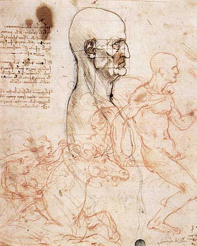 Leonardo Da Vinci Profile of a man and study of two riders, 1490