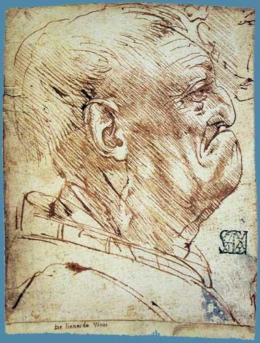 Leonardo Da Vinci Yaşlı Erkek Başı Profili, 1490