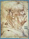 Yaşlı Erkek Başı Profili, 1490