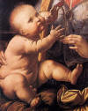 Madonna Benois, Karanfilli Meryem 1475-1478  Detay