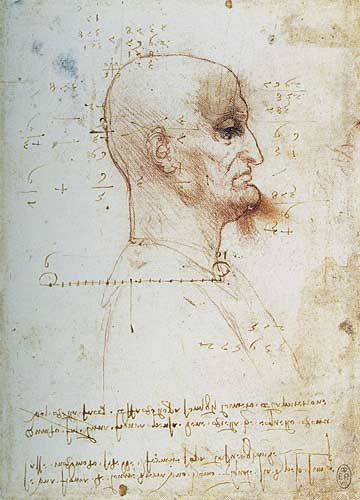 Kel Erkek Profili 1495