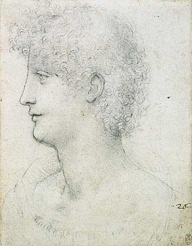 Profilden Bir Gencin Başı ve Omuzları (Salai), 1510
