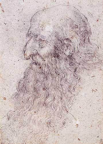 Sakallı Yaşlı Erkek Profil Etüdü, 1513