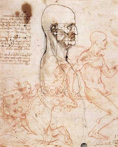 Erkek Torsu Profili, Oran Sağlaması için Karelere Bölünen Baş, ve İki Binici Taslağı, 1490 ve 1504