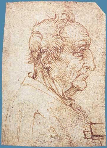 Yaşlı Erkek Başı Profili, 1485-1490