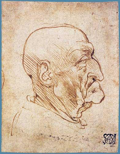 Yaşlı Erkek Başı Profili, 1490 dolayları