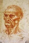 Leonardo Da Vinci Yaşlı Erkek Başı, 1505